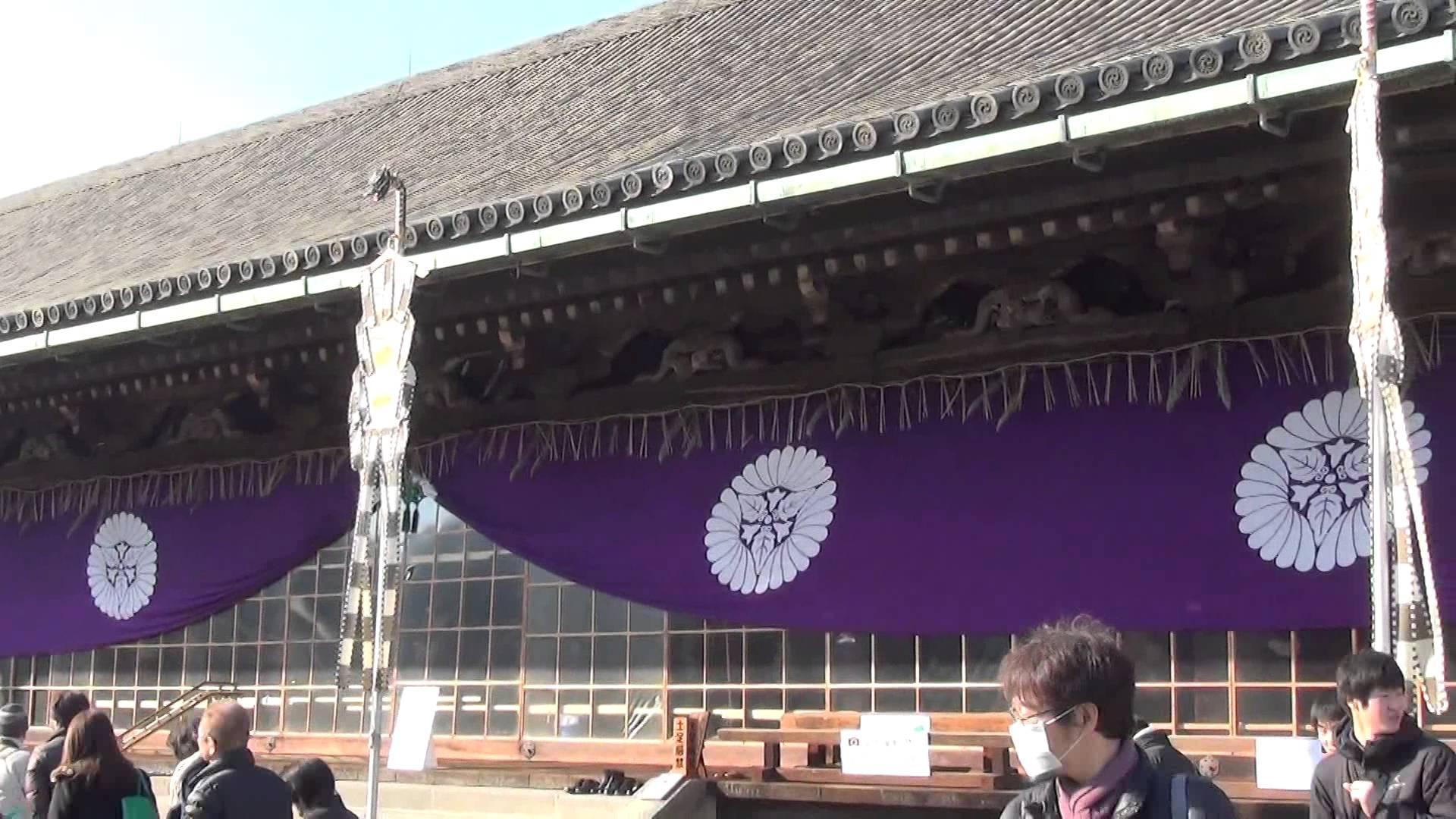 蓮華王院 三十三間堂編01 突然変異!?すでに咲いていた桜にビックリ!!