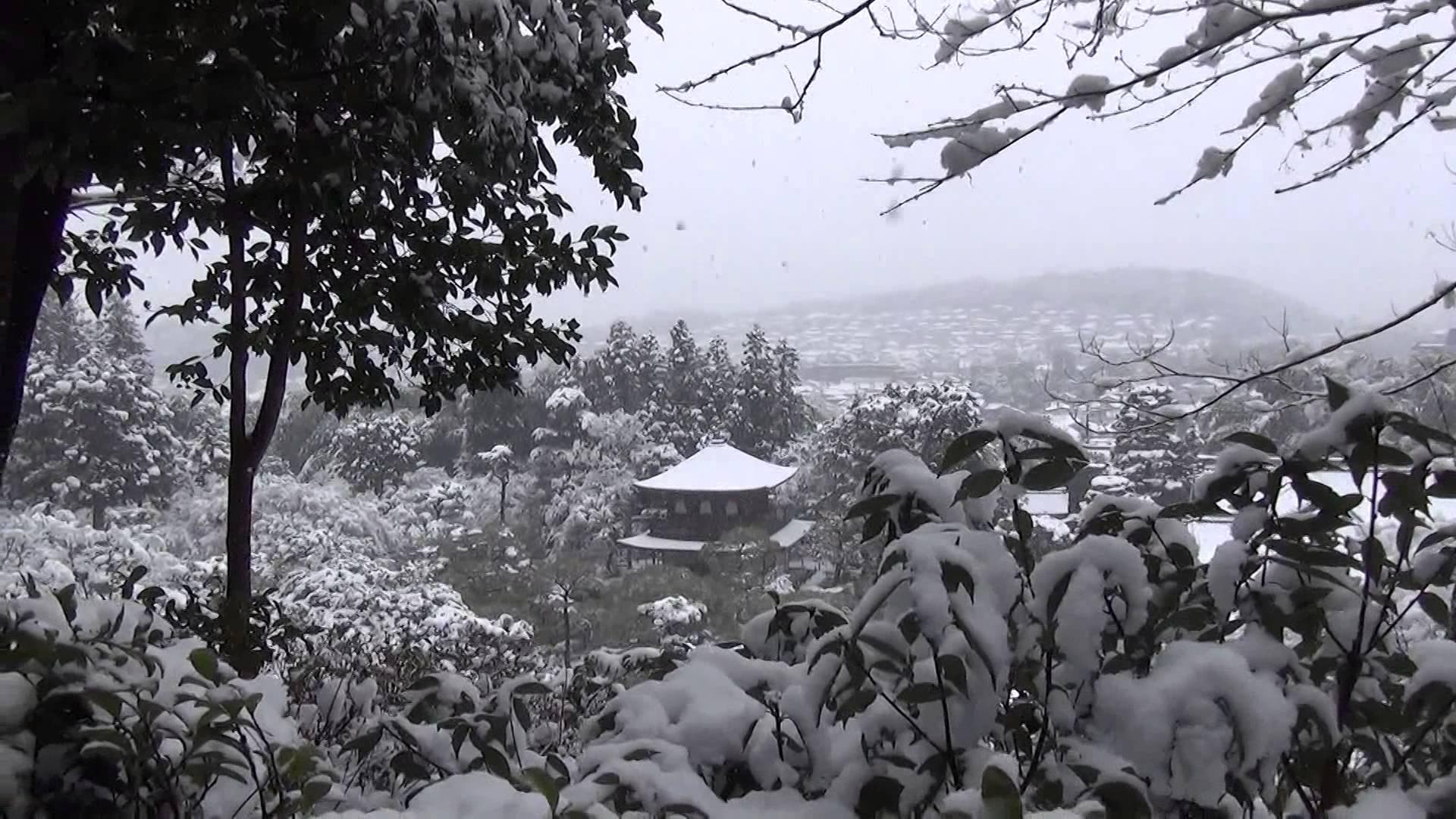 展望所から見た雪化粧銀閣寺とホワイトチョコで作ったように真っ白な街並み