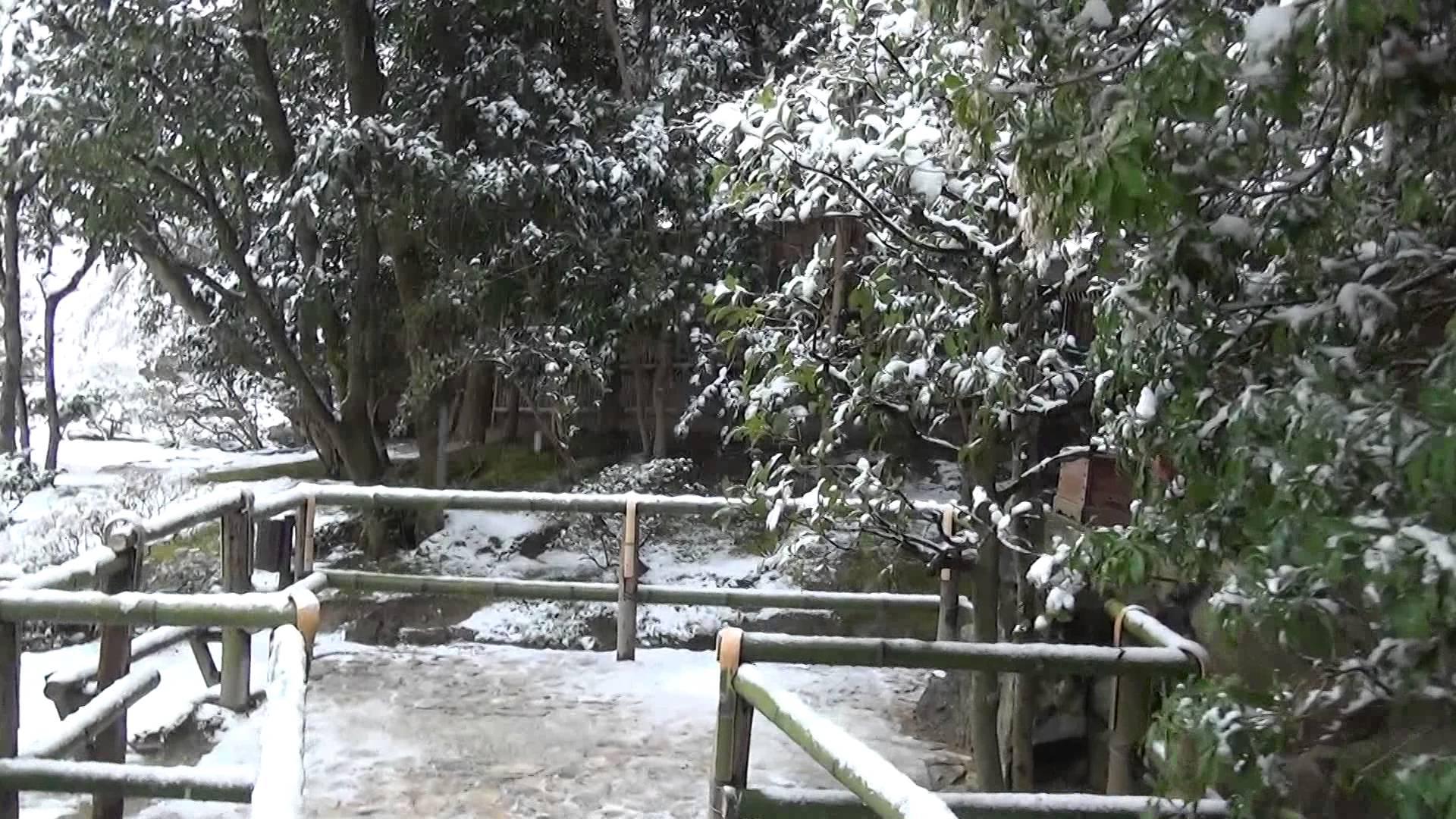 銀閣寺にある弁財天と抹茶ミルクのかき氷を連想させる雪と苔