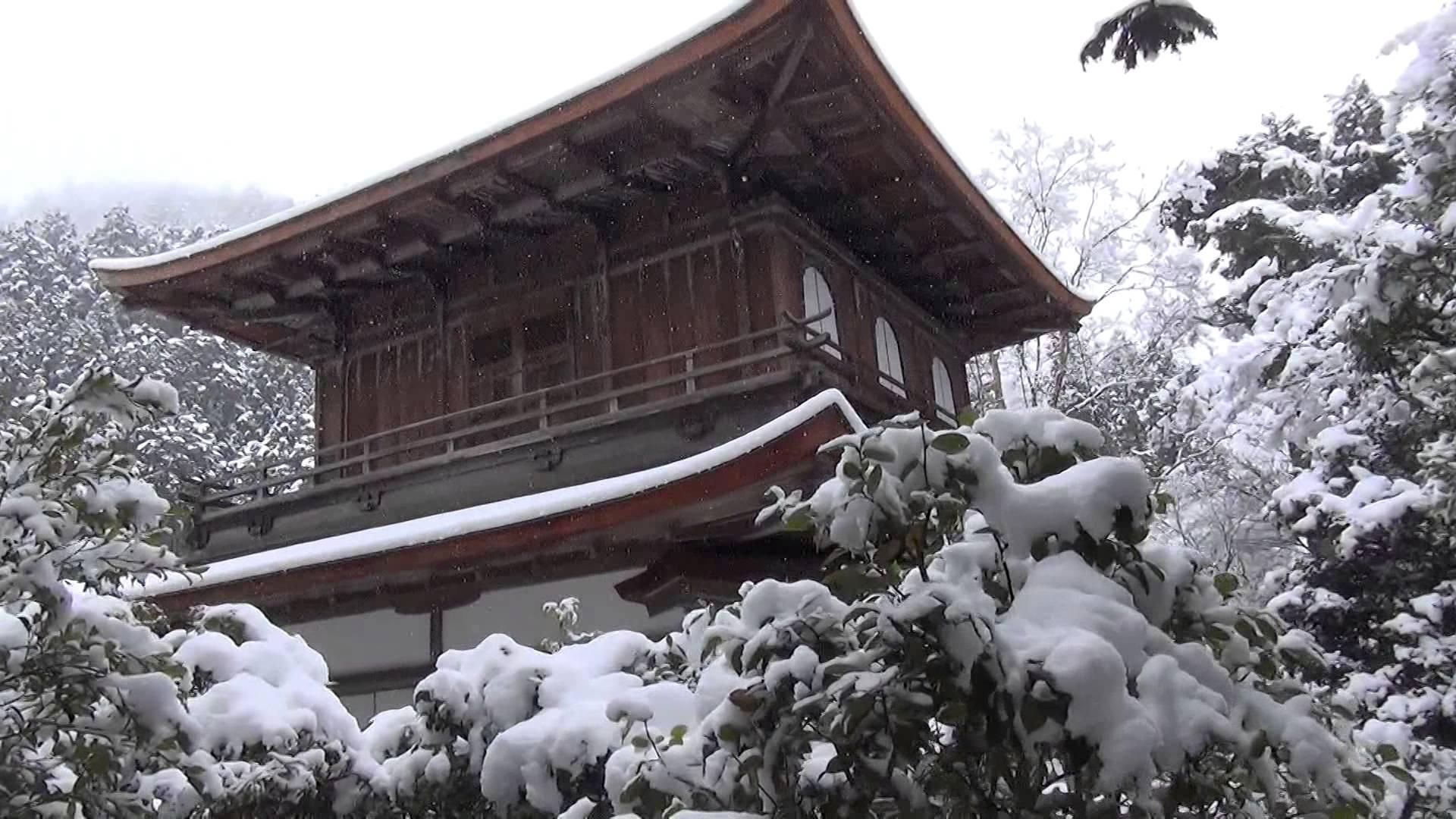 雪化粧銀閣寺の背面からの映像