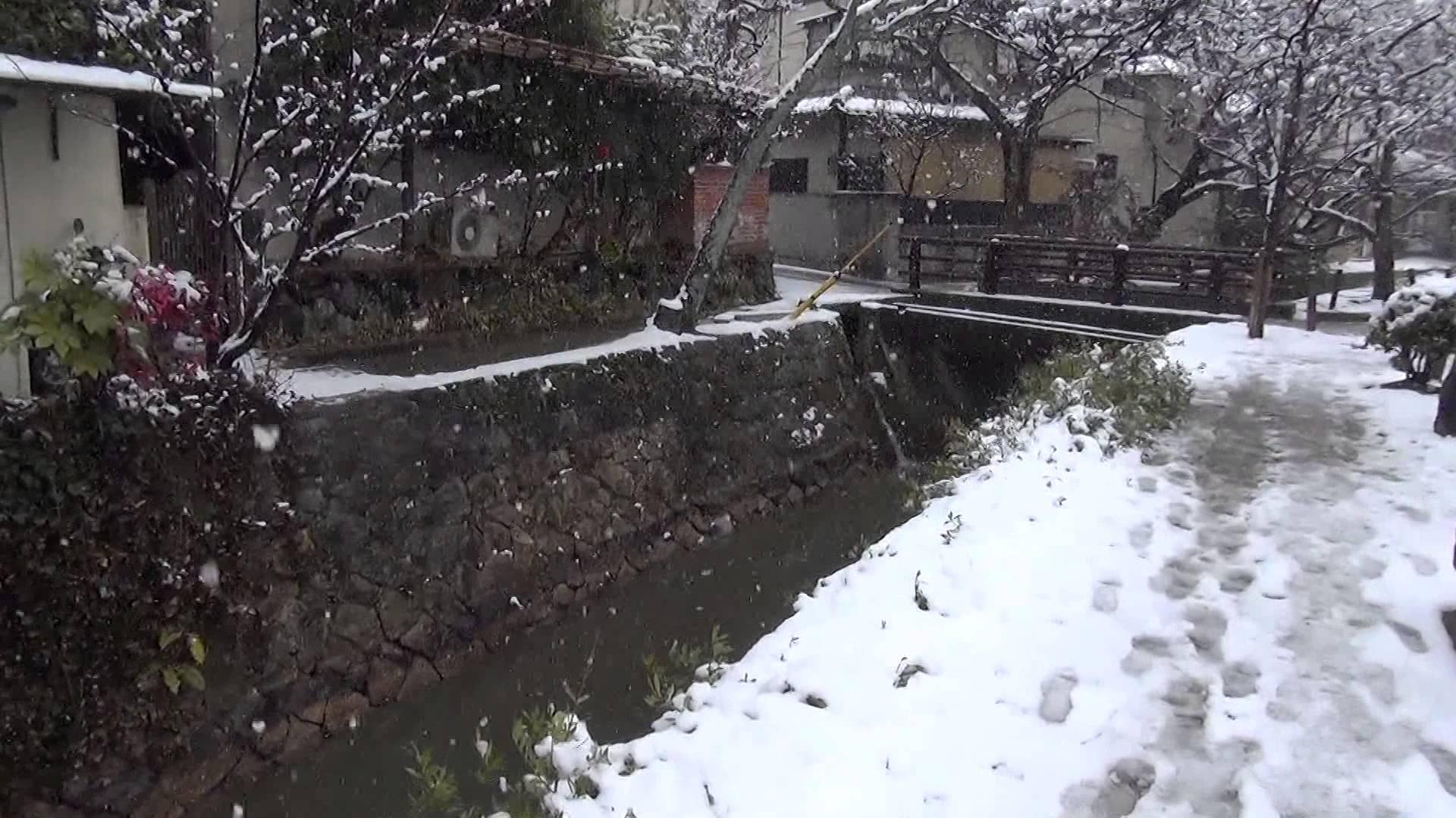 雪景色の中の哲学の道でフラフラとテツガクしてみました
